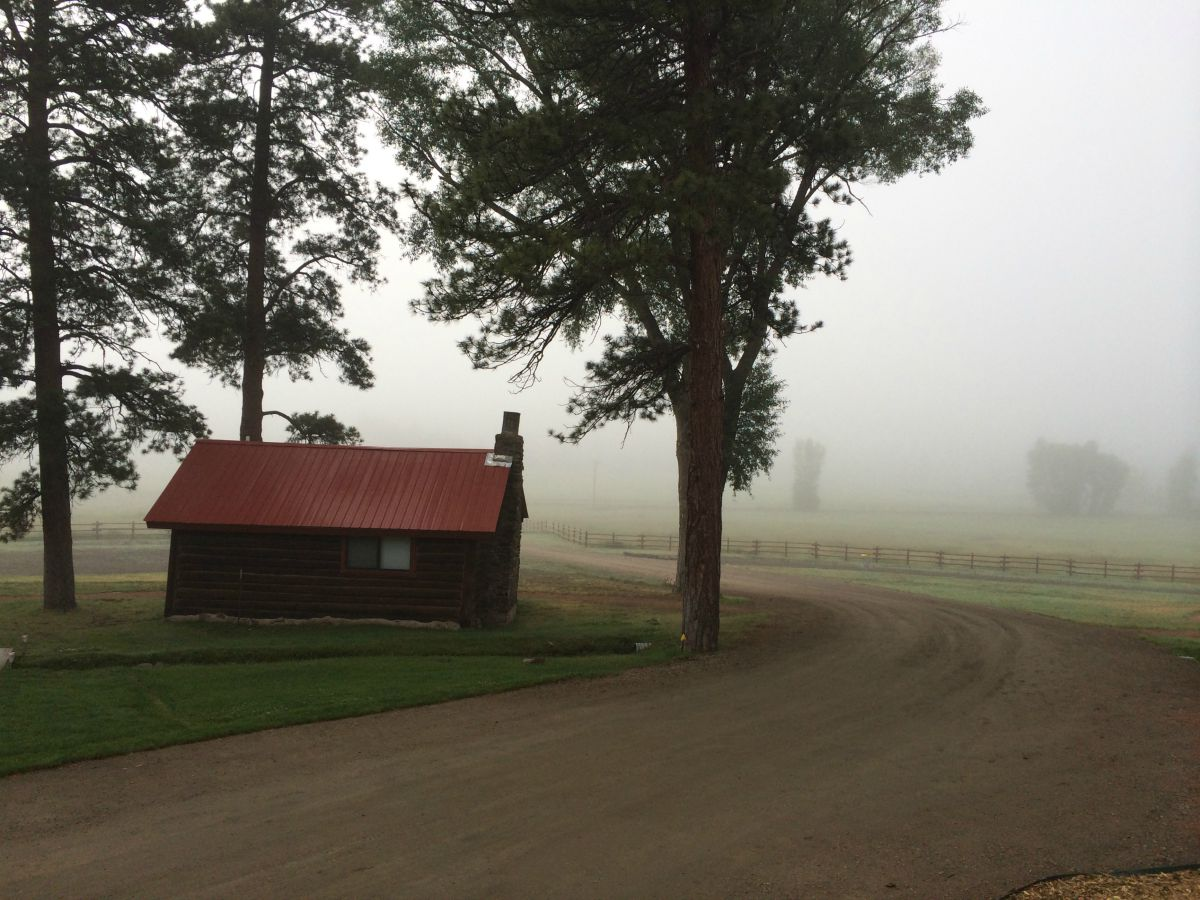 Living In The Fog: Three Ways To Live Well When Life Has You Wandering