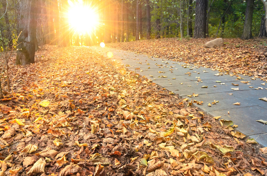 Finding Thankfulness When Thanksgiving Is Tough